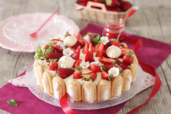 Charlotte aux fraises fa on tiramisu - Charlotte aux fraises et ses copines ...