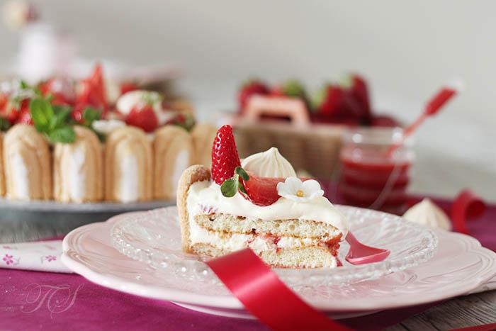 Charlotte fraises façon tiramisu2