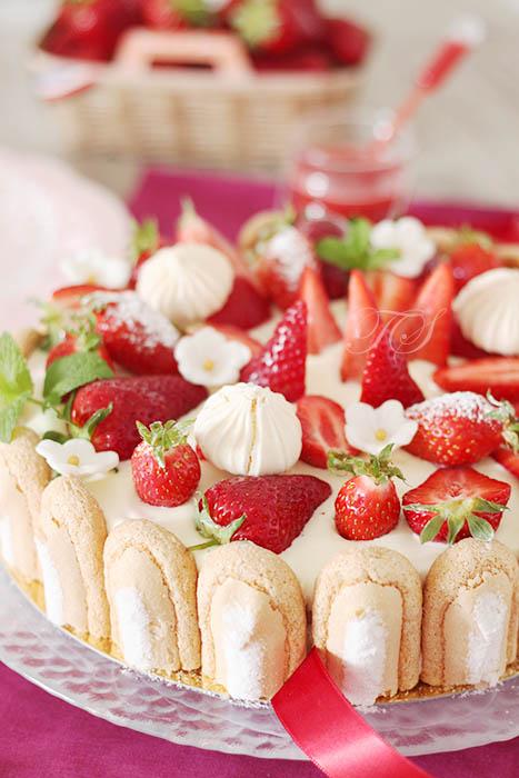 Charlotte fraises façon tiramisu3